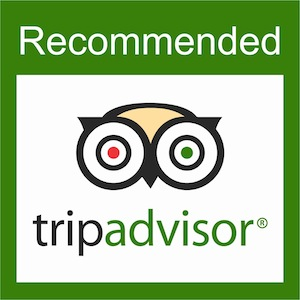 tripadvisor the must have for a service related small
