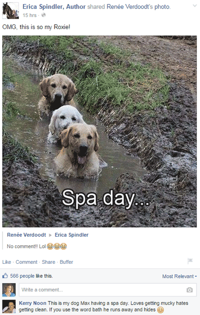 erica spindler author facebook post