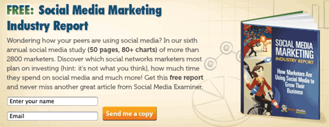 social media examiner lead magnet