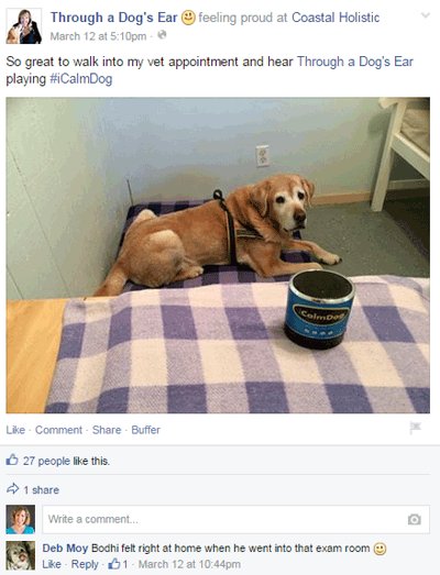 through a dog's ear facebook post
