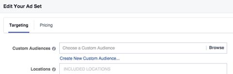 custom audience field in targeting