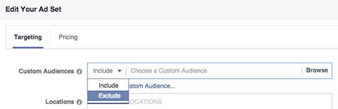 custom audience include exclude menu in targeting