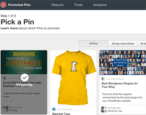 promoted pin options