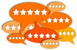Keep tabs on your ratings and reviews